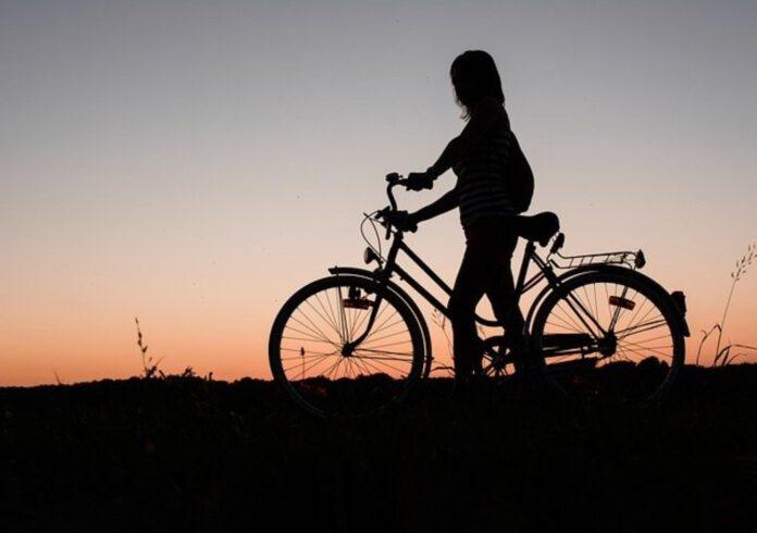 rodzaje rowerów współczesnych